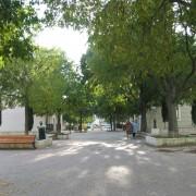 Allée d'une ZAC de logement - Montpellier (34) photo: Odile Beseme.