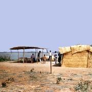 Paillote tressée au bord du Niger - photo: Gérard Lamorte.