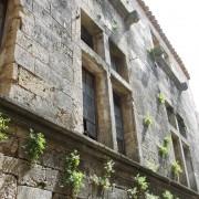 Fenêtre divisée en croix par un meneau (élément vertical) et un croisillon (élément horizontal).