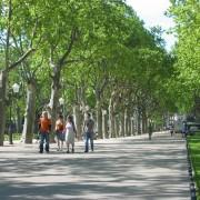 L'esplanade de Montpellier (34) photo: Odile Besème.