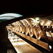 Expressionnisme de l'Aérogare de Lyon (69) (Calatrava 1994)