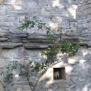 Lauze calcaire - couverture traditionnelle du Nord du Gard - photo: Françoise Miller.