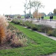 Espace vert du Parc de Gerland - Lyon (69) (Corajoud - paysagiste) photo: Françoise Miller.