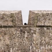 Merlons et créneaux de la forteresse-de-Louisbourg du XVIIIe au Canada – image du website.