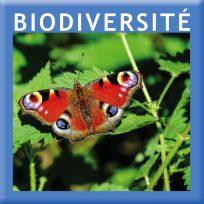 bouton_biodiv