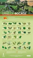 affiche_planter_dans-bocage