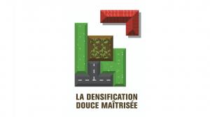 densification2_caue01
