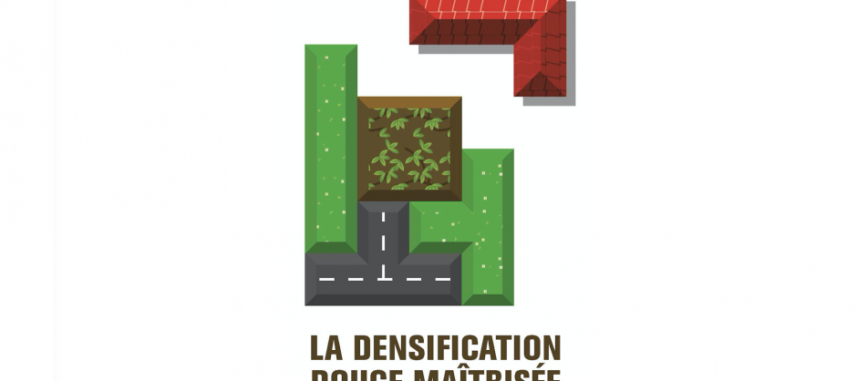 densification2_caue01
